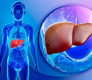 Навици, които увреждат черния дроб
