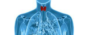 Лечение на щитовидната жлеза с помощта на натуропатията
